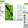 flyer pour les 50 ans du Parc National de la Vanoise