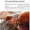 Mosaïque Magazine n°1 - janvier 2011