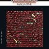 Couverture de Mosaïque Magazine n°5 - janvier 2013